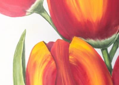 Tulpen uitLemiers